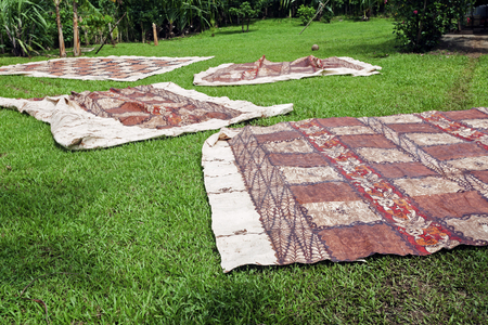 乾燥草 - エウア島, トンガ トンガのタパス。