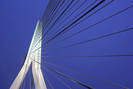 rotterdam: Erasmus Bridge in Rotterdam. Rotterdam, South Holland, Netherlands.
