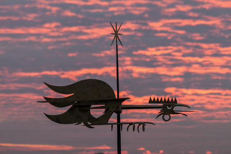 tallin: Rooster on the roof. Tallin, Estonia.