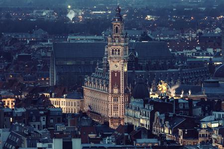 Aerial view of Lille. Lille, Nord-Pas-de-Calais, France
