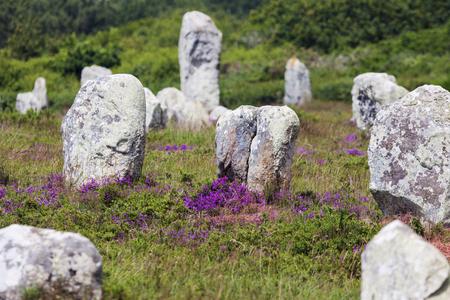 Carnac stones in Francer. Carnac, Brittany, France