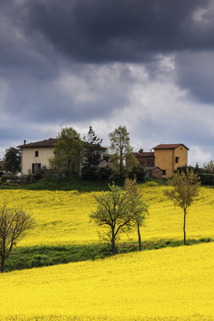 monticchiello: Tuscany landscape during the spring. Tuscany, Italy