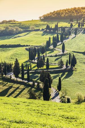 Tuscany landscape - sunny, bright day. Tuscany, Italy. Stock Photo