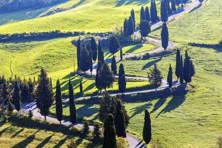Tuscany landscape in the morning. Tuscany, Italy.