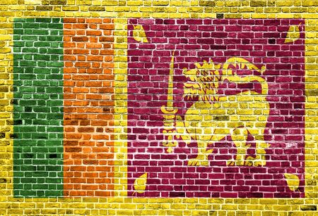 Flag of Sri Lanka painted on brick wall, background texture