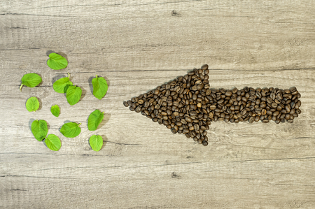 Arrow from the coffee beans with mint tea leaf wooden background Reklamní fotografie