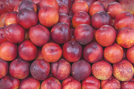 Fresh healthy peach on farmer agricultural market on morning sunny day close