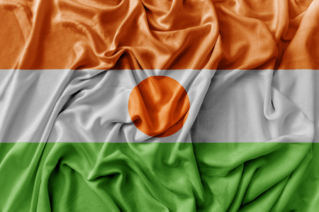 Ruffled waving Niger flag 免版税图像