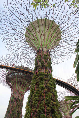 architecture: Garden By The Bay