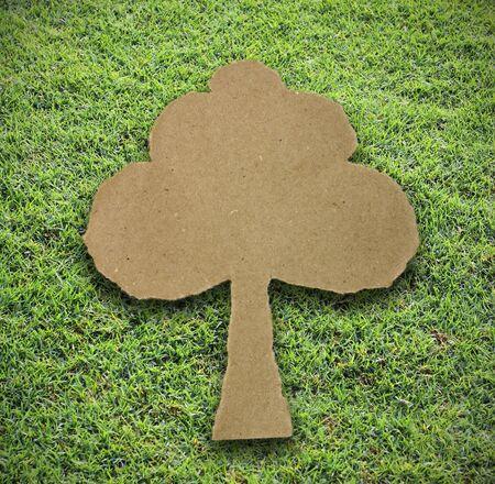attach: papel árbol adjuntar en el fondo hierba