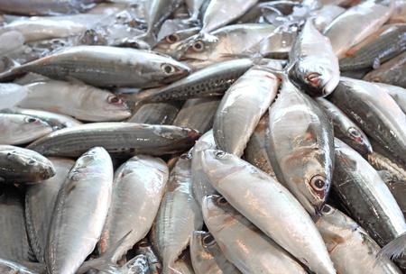 produits alimentaires: de fruits de mer poisson frais en arrière-plan, closeup marché, l'Asie, la Thaïlande