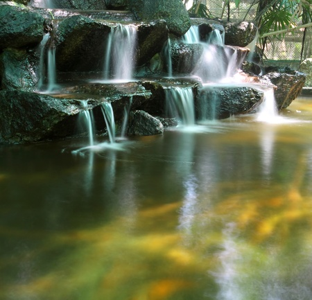 Koi fish pond with waterfalls photo