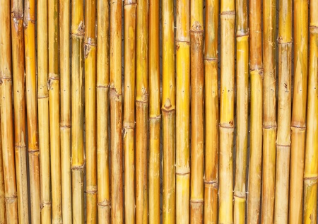 Background Texture Of A Bamboo Fence Stock Photo - 11773228
