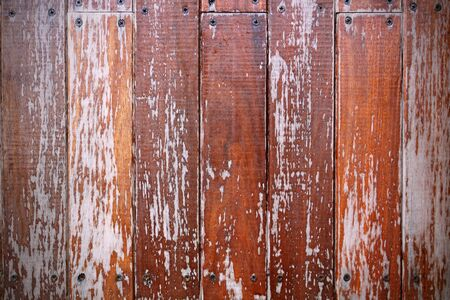 vintage wood panels Stock Photo - 11871212