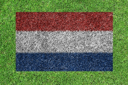 netherlands flag as a painting on green grass photo
