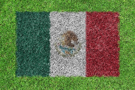 Flag Mexico as a painting on green grass photo