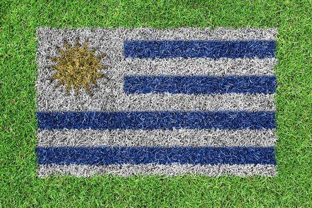 bandera de uruguay: Bandera de Uruguay como una pintura en la hierba verde Foto de archivo