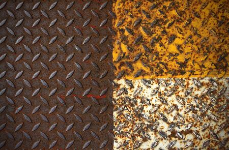 old metal diamond plate with yellow and white paint on surface photo