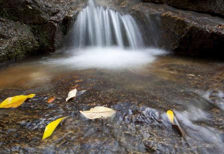 Toneprai waterfall in Phangnga, Thailand  photo