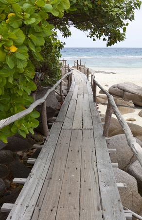 wood bridge to the sea  photo