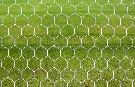 white football net, green grass  Stock Photo - 14974969