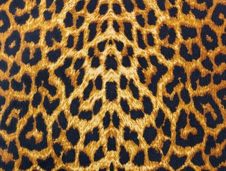 scrapbook background:  leopard skin decorative background
