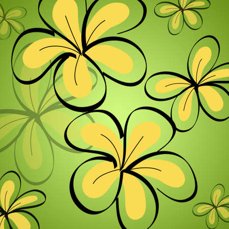 drawing Frangipani background photo