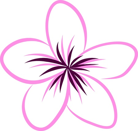 hawaiian culture: drawing Tropical Plumeria Flowers Vector Illustration