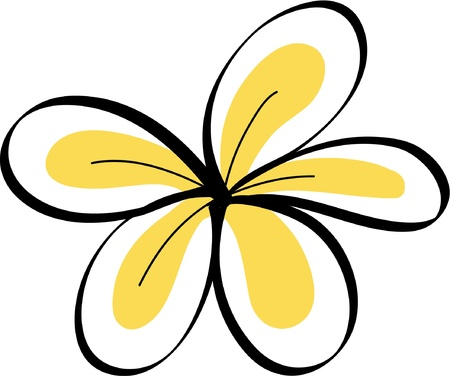 drawing Tropical Plumeria Flowers Vector Vector