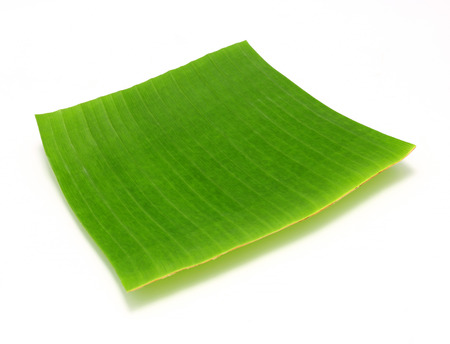 banana leaf on white background