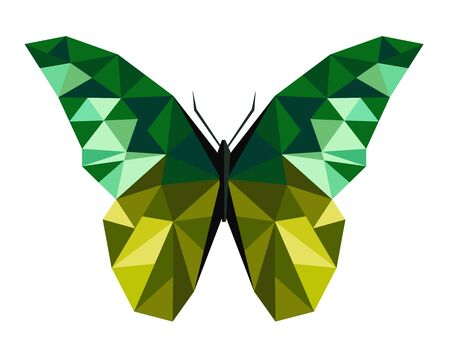 marge: Abstract polygonal butterfly low poly illustration.