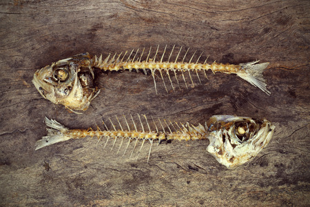 smoked: eaten fish with head and tail with flies