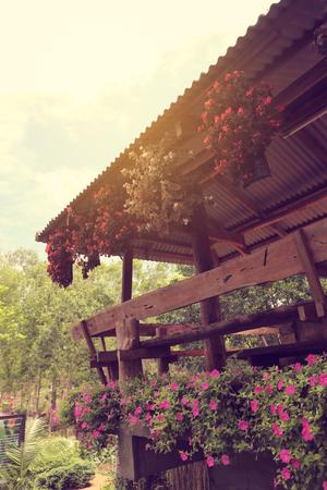 flower hang near balcony of restuarant in north of thailand vintage light filter 写真素材