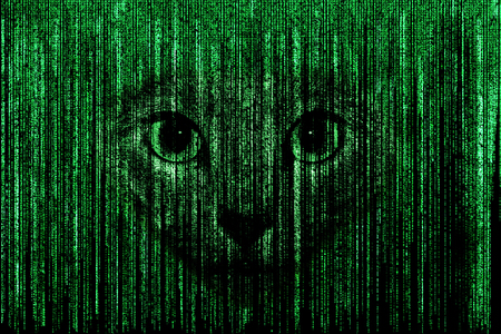 coded: Cat face in green matrix background, computer coded with symbols and characters.