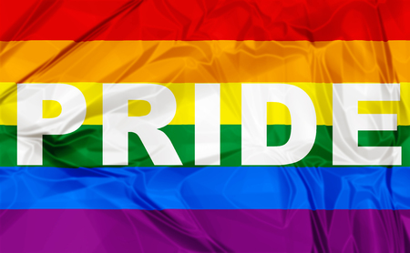 Colorful Gay Pride flag with black lettering pride.