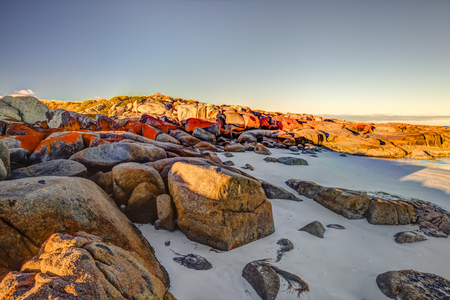 ranging: White sandy beach and orange lichen in The Gardens, Bay of Fires consevation Area ranging from Binalong Bay to Eddystone Point, east coast of Tasmania in Australia. . Stock Photo