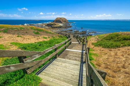 island: Phillip Island Nature Park, The Nobbies, boardwalks to Seal Rocks. Grant Point, western tip of Phillip Island, Victoria, Australia.