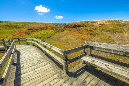 Boardwalks in Phillip Island Nature Park in summer, The Nobbies, Grant Point, western tip of Phillip Island, Victoria, Australia.