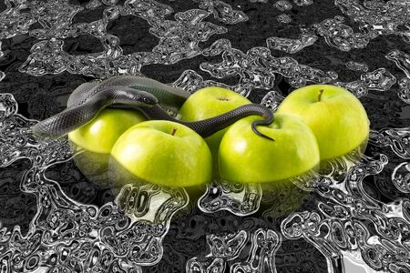 temptation: Black nigrita snake on green apples floating in petrol with skull reflections, temptation concept and poison apples concept, pollution and contamination concept. Stock Photo