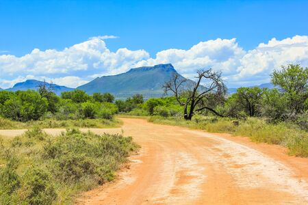 surrounds: Sand road with cloudy sky, Camdeboo National Park in the summer, located in the Karoo that almost completely surrounds the town of Graaff-Reinet, South Africa. Stock Photo