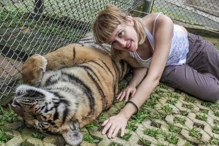encounter: Smiling blonde woman tourist lying on a adult tiger, Zoo of Chiang Mai, Thailand, Asia. . Stock Photo