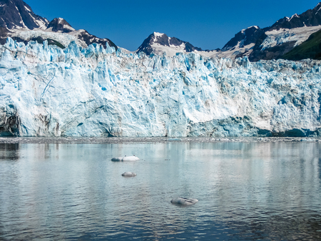 Cruise to Columbia Glacier in summer, Prince William Sound, Alaska, US America