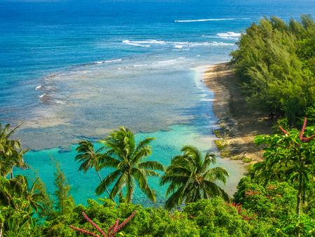 카우아이, 하와이, 미국에서 유명한 대원 해변의 전경.