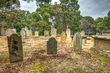 arthur: Port Arthur, Tasmania, Australia - January 15, 2015: gravestones in the Isle of the Dead hystoric site, used as the graveyard for the penal settlement of Port Arthur  from 1833 to 1877