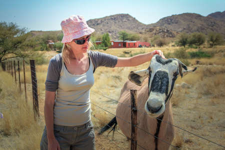 solitaire: Young tourist woman touches a gemsbok in a farm, Solitaire village in Namibia, Africa. Stock Photo