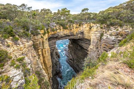 タスマン アーチはタスマン国立公園、タスマニア、オーストラリアの南東海岸にタスマン半島で見つけた珍しい地質形成です。 写真素材