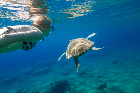 A young woman snorkeler swims with sea turtle Caretta in green and turquoise waters of the famous Foneas Beach, Kardamili in Mani peninsula, Peloponnese, Greece.