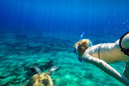 schildkröte: Eine junge Frau Schnorchler schwimmt mit Meeresschildkröte Caretta in Grün und das türkisfarbene Wasser des berühmten Foneas Beach, Kardamili in Halbinsel Mani, Peloponnes, Griechenland. Lizenzfreie Bilder