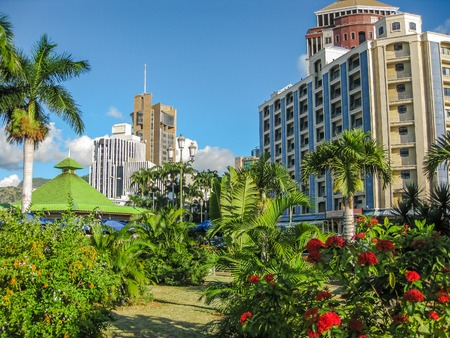 'palm trees': The city center of Port Louis, the capital of the Republic of Mauritius, Indian Ocean.