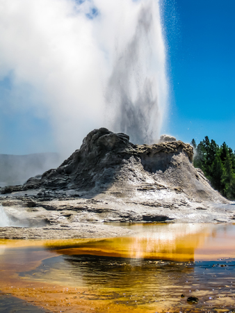 tourist feature: Castle Geyser erupts with hot water and steam with pools of thermophilic bacteria and is a cone geyser in the Upper Geyser Basin of Yellowstone National Park, Wyoming, United States.